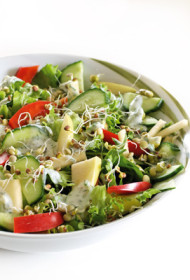 Ābolu, gurķu un zaļo lapu salāti dīgstu ielenkumā