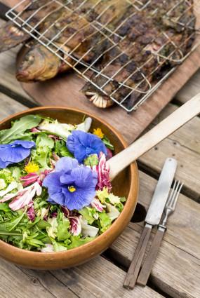 Pļavas salāti