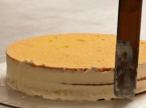 Torte-05