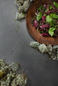 Siltie tajiešu melno lēcu un spinātu salāti ar kokosriekstu krēmu un kaffir laima lapām