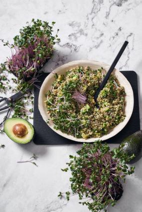 Zaļo griķu salāti ar redīsu dīgstiem