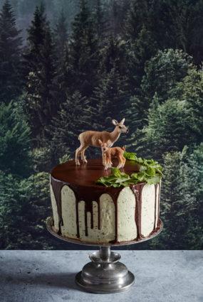 Šokolādes piparmētru kūka